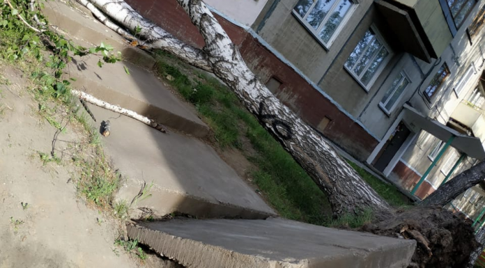 10 devastating photos with the effects of the hurricane in Novosibirsk