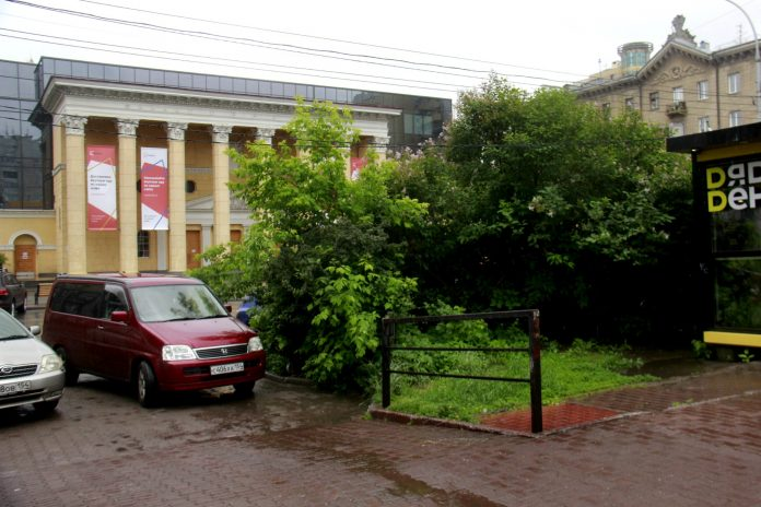 Novosibirets videotaped swarms of rats in the center — on Lenin street