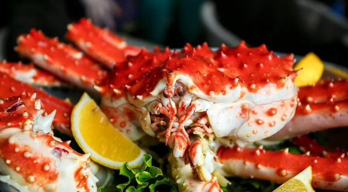 Novosibirsk company brings home oysters, crabs and scallops, and Instagram advises quick recipes