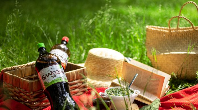Vacation like a king: share the secrets of how to organize a picnic that will be remembered even in the winter