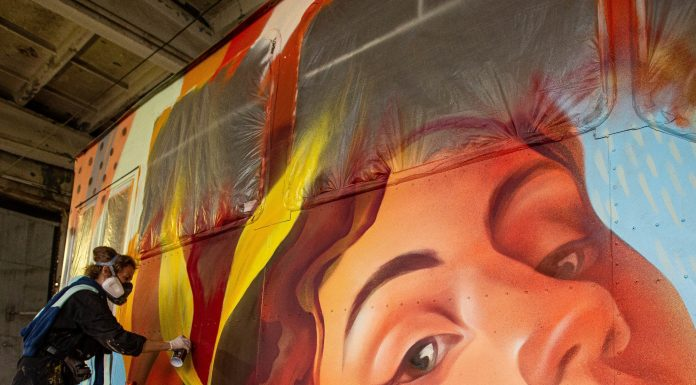 Artists painted two more tram — see what they did