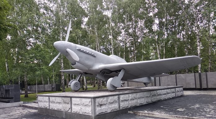 As tin soldiers: military equipment in the Park of Glory painted in the unusual color