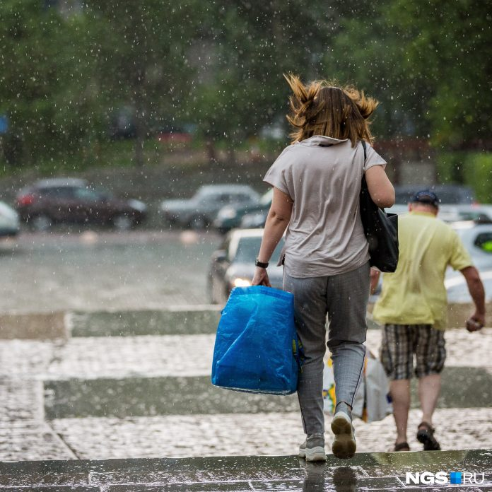 Heat does not wait: Novosibirsk weather forecasters made a forecast for the next three days