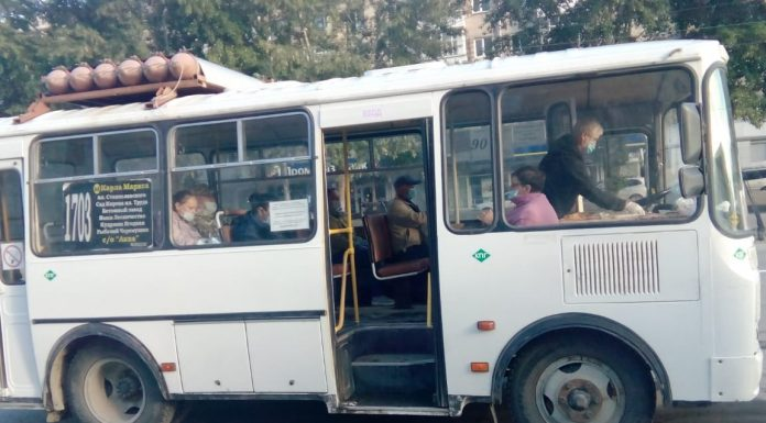 It is time to the country: authorities returned popular summer bus routes from Novosibirsk