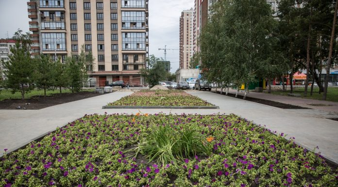 Make the request of the inhabitants: for Narymsky square have ordered a children's Playground with swings
