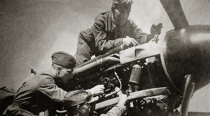"""""""Never knew fatigue"""": Siberian nights collected planes and accidentally met with his brother after the Victory"""