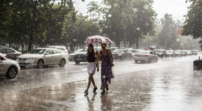 Sudden weather changes and fresh statistics on sick: the online chronicle of events June 13