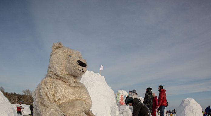 A home for polar bear. On the Ob sea built a hundred needle — look at the most unusual