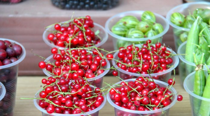 Bucket for 250: a review of the street markets of Novosibirsk, where you can buy delicious fruits and vegetables