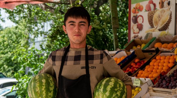 """Here is the """"torpedo"""": how much are the first melons in Novosibirsk and how to choose them"""
