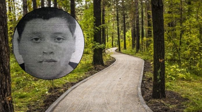 In Novosibirsk the woods the second day looking for 14-year-old sick boy: six shots later