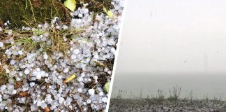 """""""It was 10 minutes, but it seemed eternity."""" Karakansky forest was filled with large hail"""
