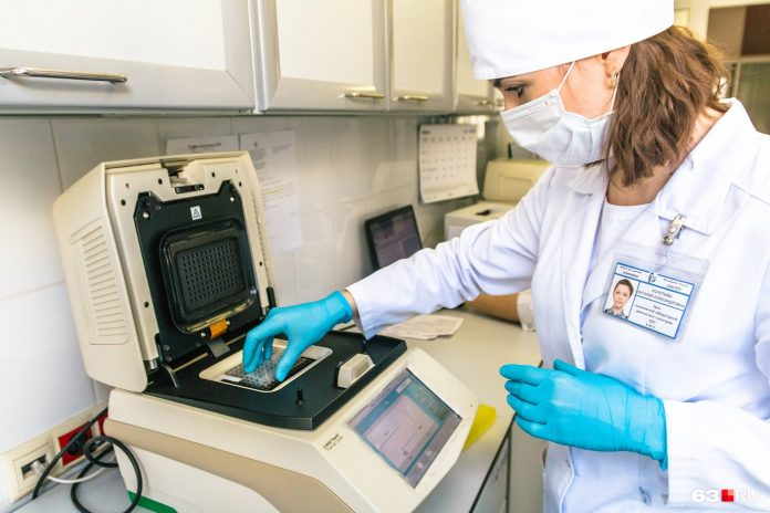 The CPS has announced the first results of the research of Novosibirsk for antibodies to kovido