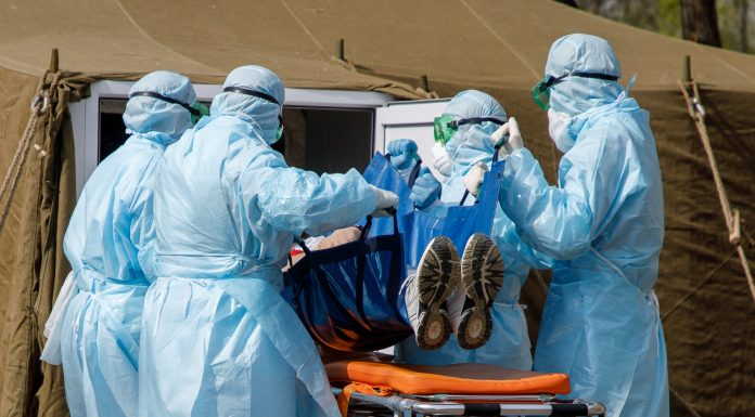 Who recorded the daily record of cases of coronavirus in the world