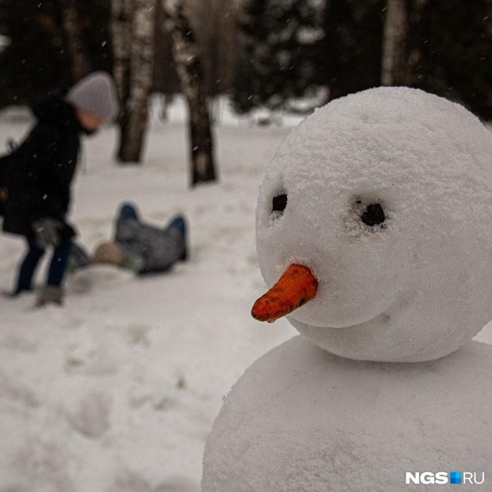 Why February more like March: study the weather forecast to the end of winter in Novosibirsk