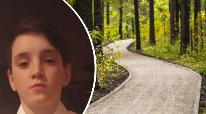 In Novosibirsk missing 12-year-old boy volunteers asking for help in the search