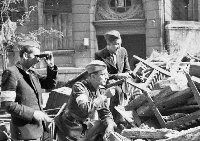 Some Russians fought on the side of the poles in the Warsaw uprising