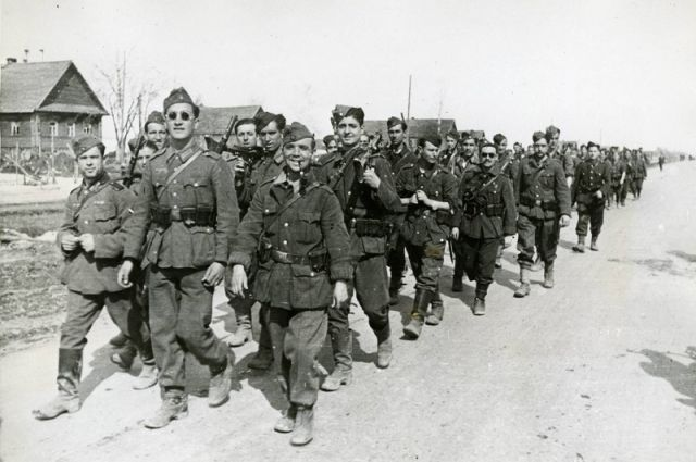 Blue division of the Wehrmacht: what happened to the Spaniards on the Eastern front