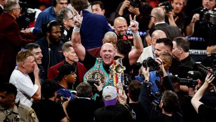 Boxer fury: the king is back on top