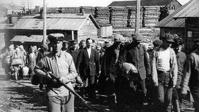 How many prisoners of the Gulag fought in the great Patriotic