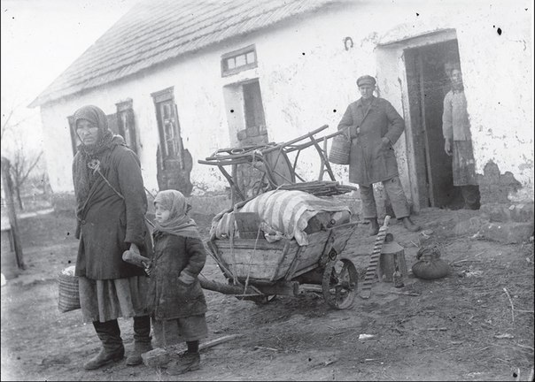 Mouse invasion in 1932 in the Soviet Union: how it's connected with famine