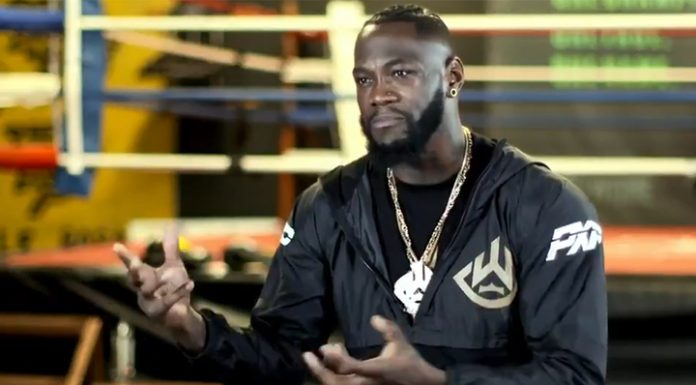 The experts recognized the knockout Wilder's best in 2019