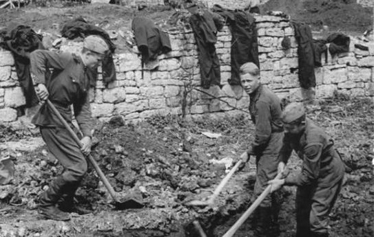 The riots in the construction battalion in 1955: what were dissatisfied military construction