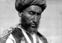 How many citizens of the Russian Empire and the Soviet Union fled Afghanistan