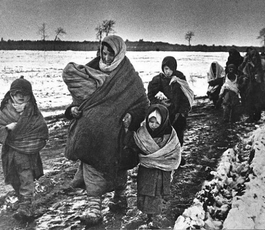 What happened to the refugees from the Soviet Union who went in the Third Reich
