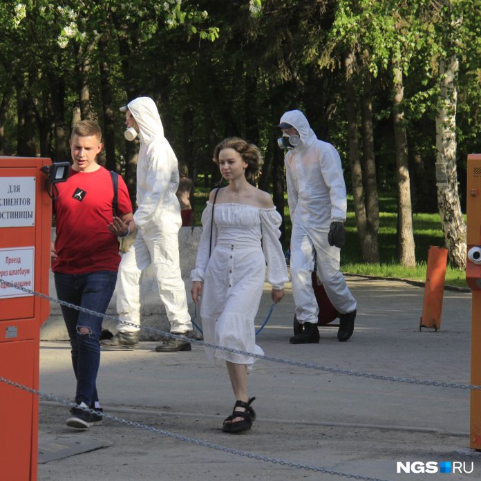 Extend the self-isolation in Novosibirsk until the end of summer? Experts forecast