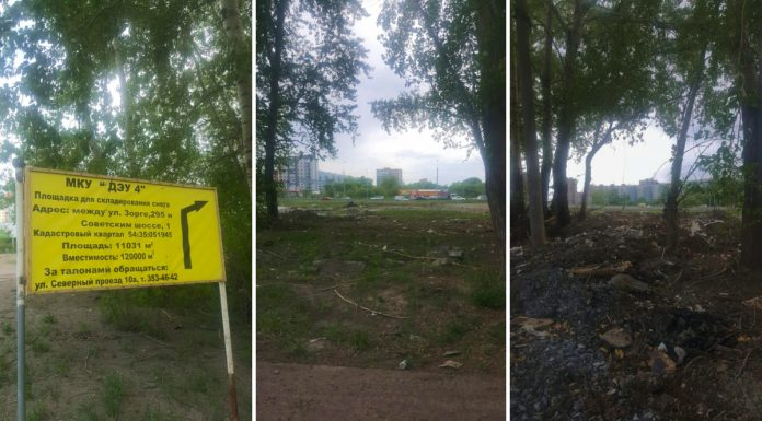 """""""I arranged a nest of vipers"""": a site on the Soviet highway turned into a dump"""