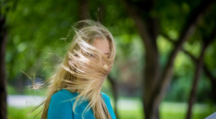 Last days of spring are windy: the weatherman made a forecast for the coming weekend
