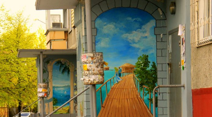 The most beautiful graffiti of Novosibirsk: journalist NGS discovered the special style of painting in the North-Camscom