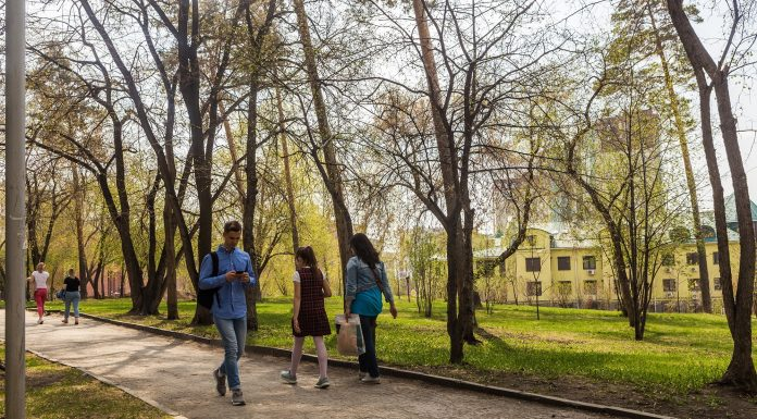 To Novosibirsk approaching summer heat: the weather forecast for the upcoming holiday weekend
