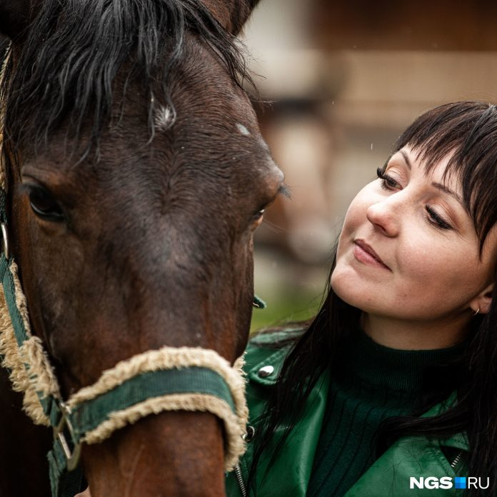Bet on a horse: Siberian invested 1 million in horses with character. Have you managed to earn some money