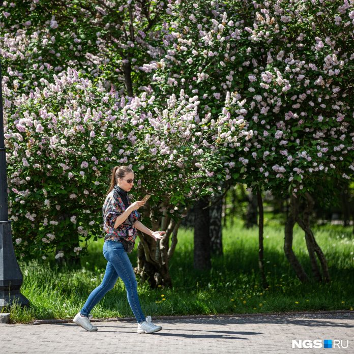 In Novosibirsk promise a heat to +32 degrees: online report about the life of the city