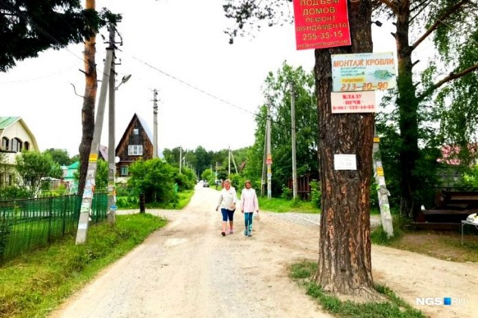 Murder in the Rue Light: bachelor party in a holiday village near Novosibirsk ended with firing