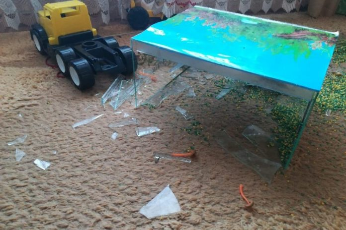 The court sentenced the owner of a private kindergarten where the little girl fell aquarium