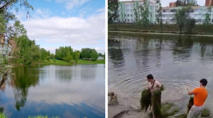 """""""Exhausted, pulling out a huge pile of grass"""": a drunken Siberian man decided to clean the lake and almost drowned"""
