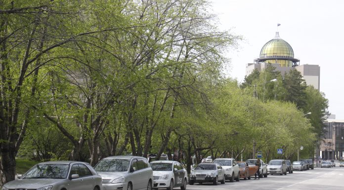 """""""In the air, a terrible smell of something rotten"""": the city's residents complained about the stench in Akademgorodok"""