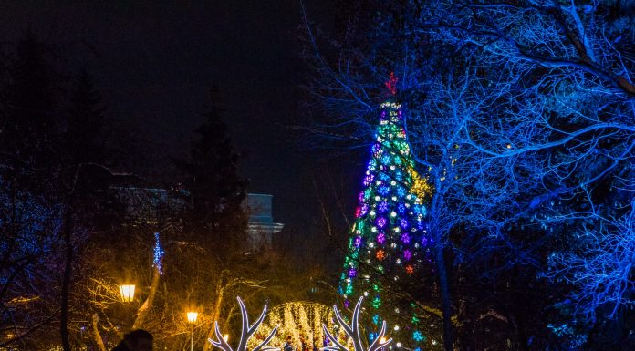 Novosibirsk has told, where he went on Christmas vacation — survey results