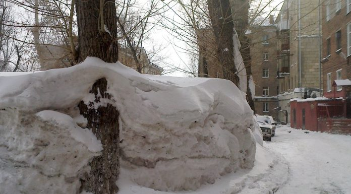 """The Director mku """"Kalinin"""" will go on trial: he has to pay for snow removal, which was not cleaned"""