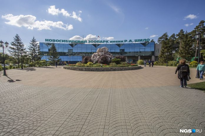 The Novosibirsk zoo for the third time to get the money to help the authorities