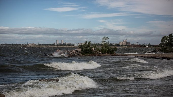 Gusts knocked down the heat: forecasters told when in Novosibirsk will calm down wind