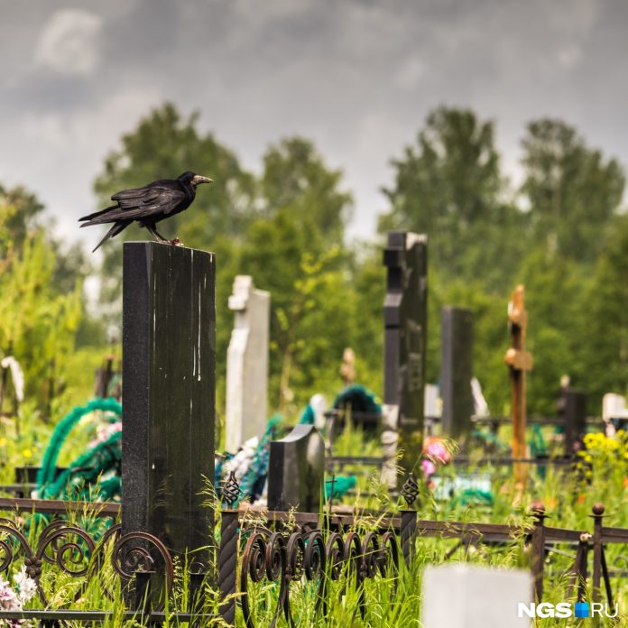 In Novosibirsk skyrocketed mortality: consider how many people died in July 2019 and 2020